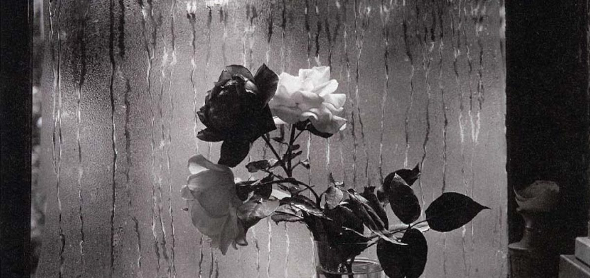 _src_8009-Josef Sudek - z okna mojej pracowni 32